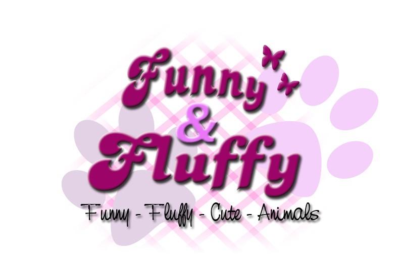 FunnyFluffy